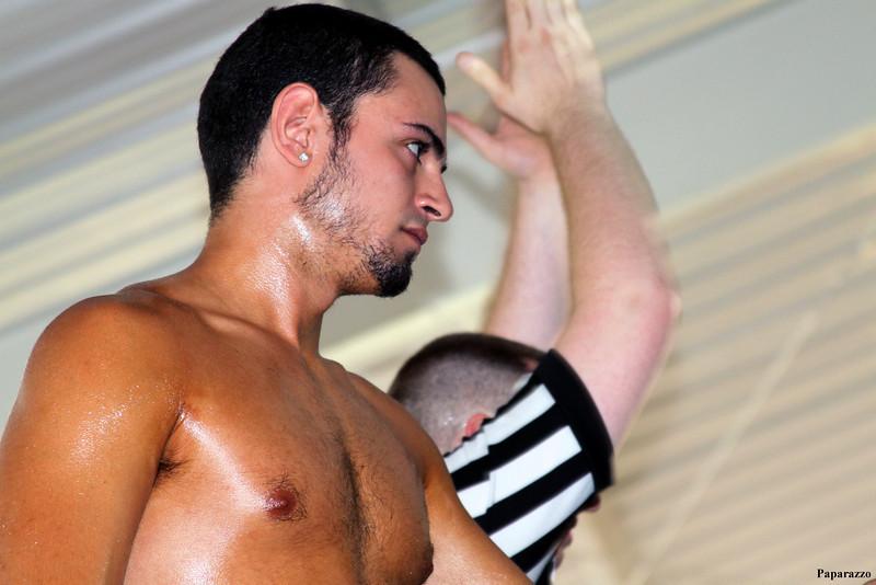 Professional Wrestling 2012-2013